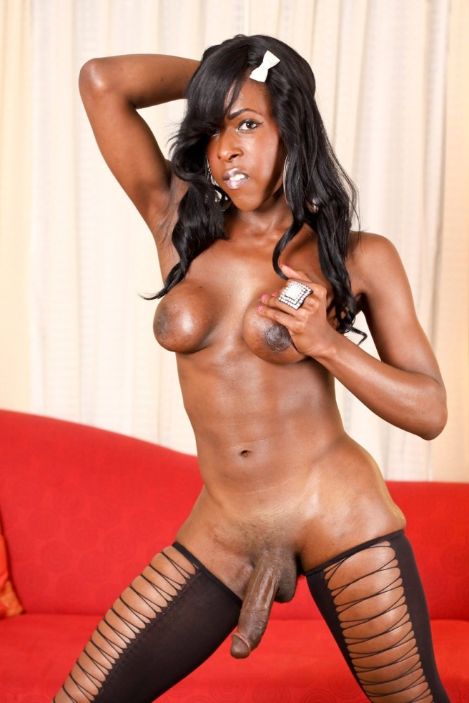 She  50 Tranny Collections Sorted: by..