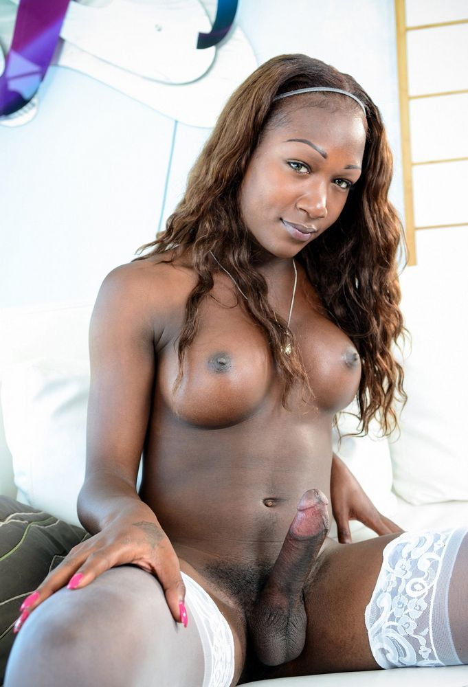 Big-boobed ebony shemales with thick..