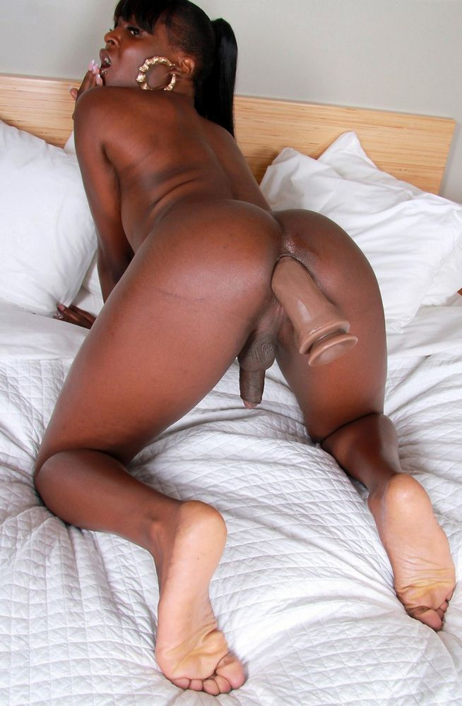 Insane black t-girls with superb..